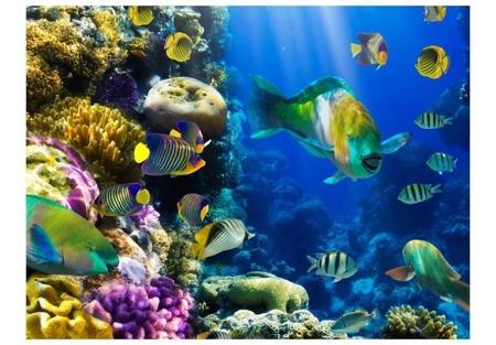 Fototapeta - Podwodny raj