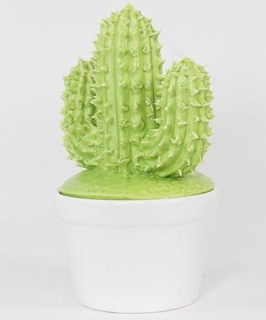Pojemnik Kaktus-Prom.