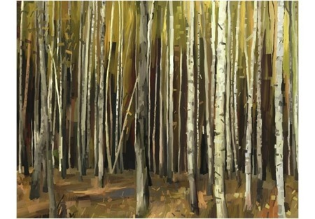 Fototapeta - Las tysiąca drzew
