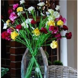 Sztuczny kwiat goździk mix color H: 65 cm