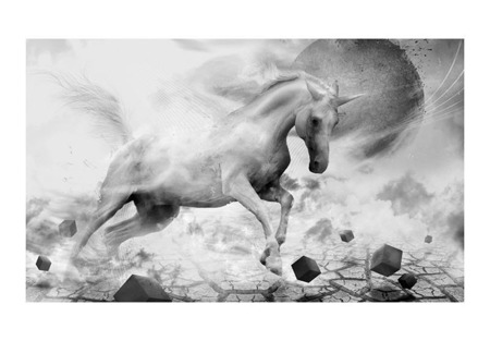 Fototapeta - Unicorn