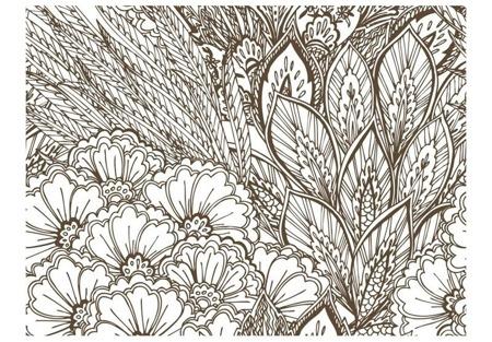 Fototapeta - łąka (czarno-biały)